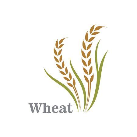 Agriculture wheat logo or symbol icon design illustration Logo