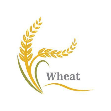 Landwirtschaftsweizenlogo oder Symbolikonendesignillustration