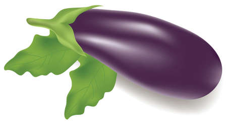 vector illustration of an eggplant with leaves