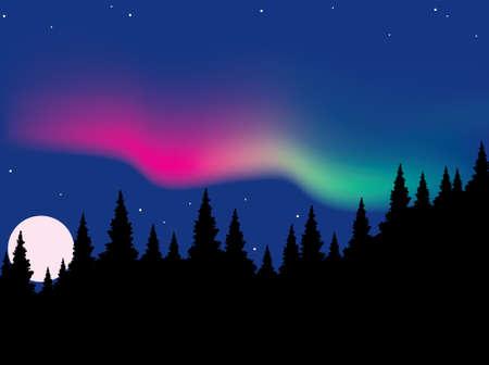 aurora Vector polaris sulla foresta