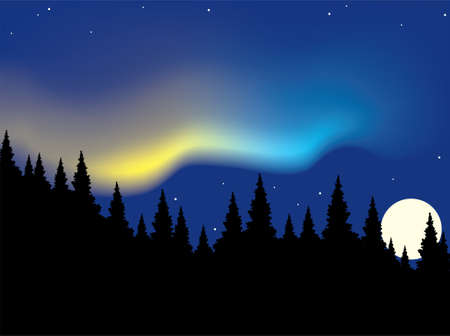 borealis: vector aurora polaris over forest  Illustration
