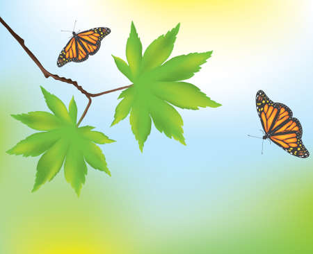maple leaves and butterflies Stock Vector - 9928917
