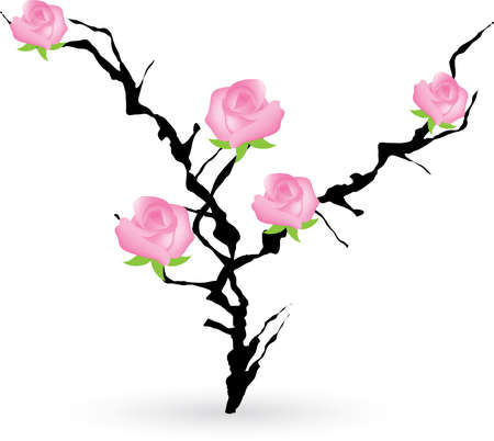 blackthorn bush with roses Vector