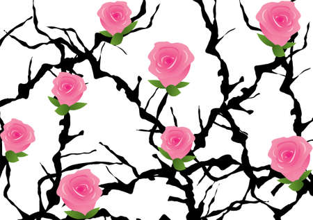 thorns  sharp: blackthorn bush with roses