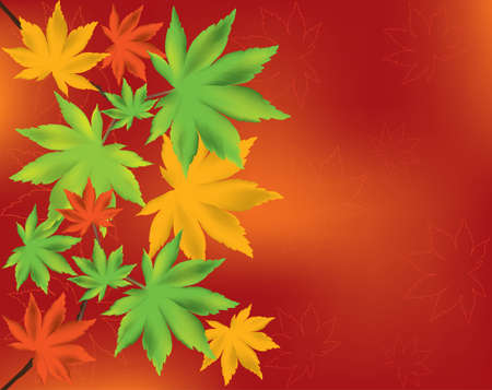 Maple leaves Stock Vector - 10474433