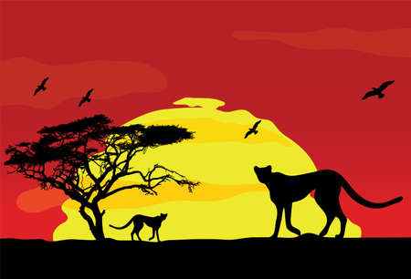 wild african animals at sunset. Vector