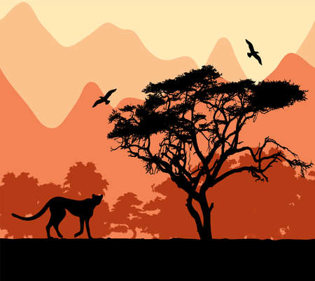 south african birds: wild african animals. Illustration