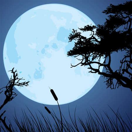 luz de luna: vector gran luna azul y las siluetas de ramas de los árboles