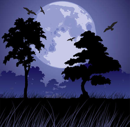 night bird: vector big blue moon and silhouettes of trees