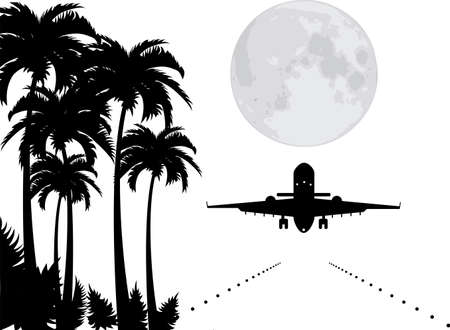 vector palms, moon and plane over runway