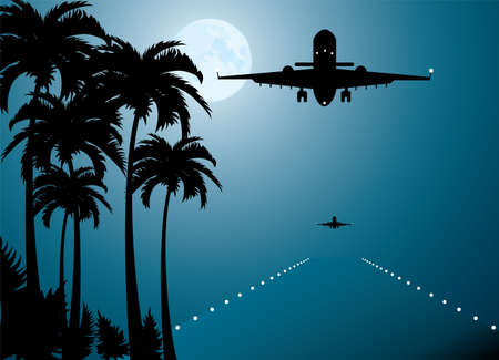 airplane landing: vector palms, moon and plane over runway