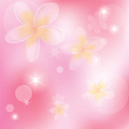 plumeria on a white background: vector abstract pink background with flowers