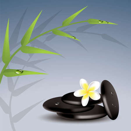 meditation stones: vector bamboo, frangipani and wet stones