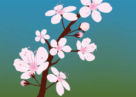 early spring: cherry branch Illustration