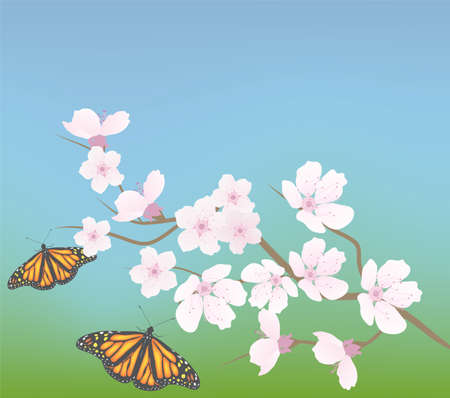 early spring: cherry branch and butterflies Illustration