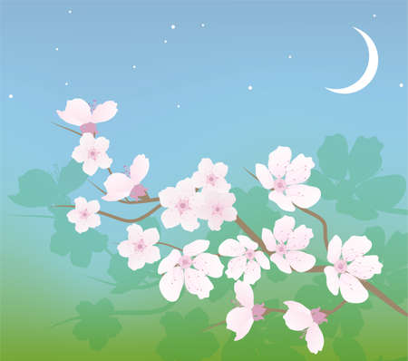 early blossoms: cherry branch Illustration