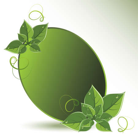 green leaves eco design Stock Vector - 13846423