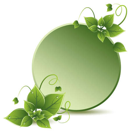 green leaves eco design Stock Vector - 13846424