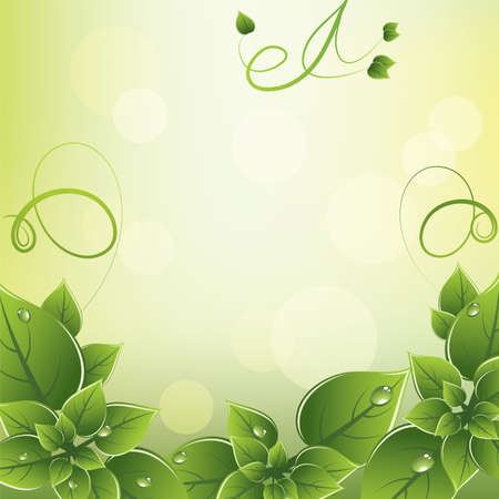 frame with fresh green leaves Vector