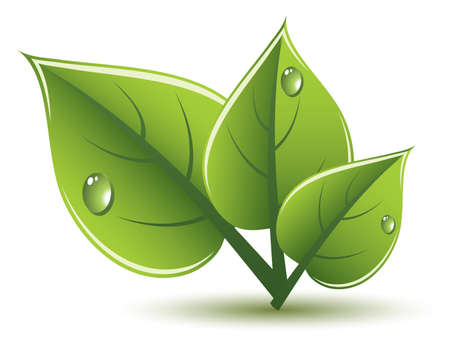 green leaves eco design Stock Vector - 13846380