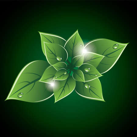 green leaves eco design Stock Vector - 13846426
