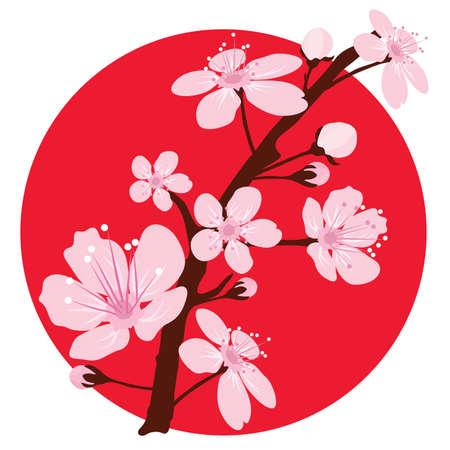 fleur cerisier: branche de cerisier japonais sur le drapeau