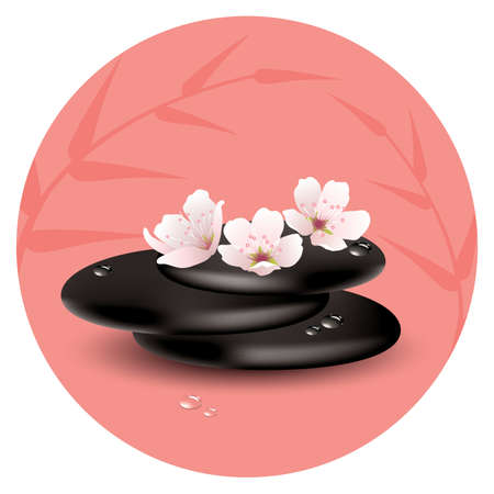 zen stones and cherry flowers Vector