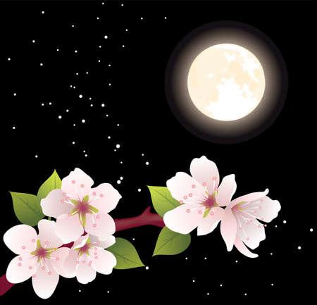 ramo di ciliegio: vettore ciliegia ramo e luna