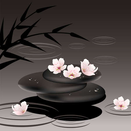 meditation stones: vector zen stones in water and cherry flowers