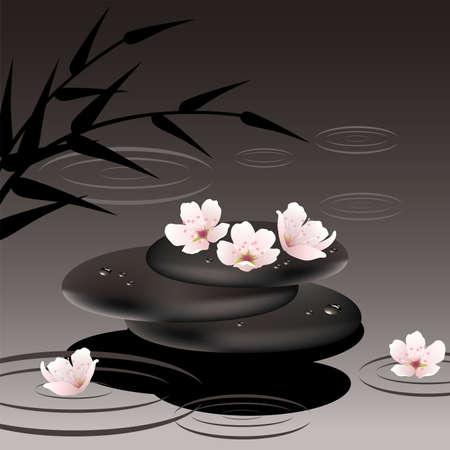 zen vector: vector zen stones in water and cherry flowers