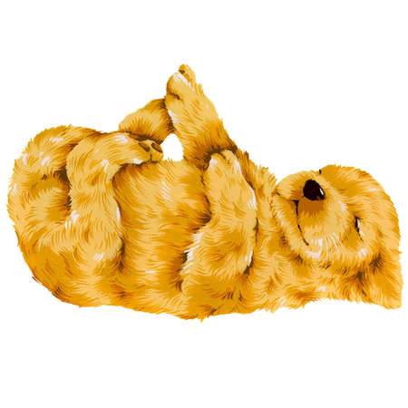 amiability: dog-7