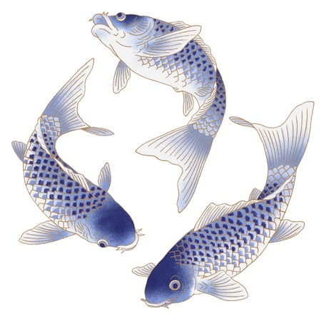 fish drawing: three swimming fish