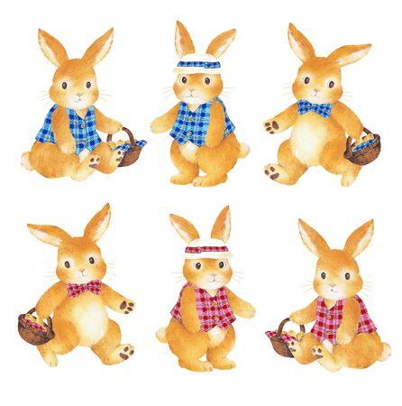 naivete: A pretty rabbit,