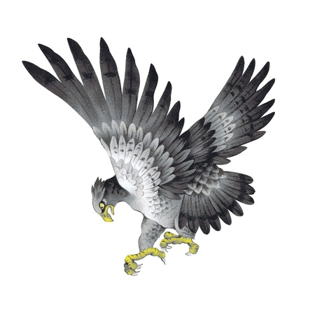 The illustration of the eagle Stock Illustration - 17851704