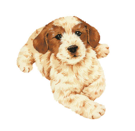 guiltless: pretty dog