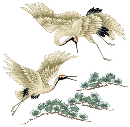 vol d oiseaux: Une grue japonaise