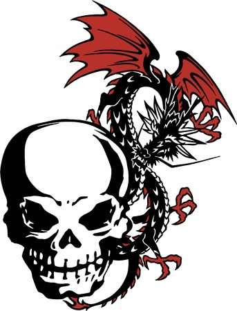 The skull and a dragon Vector