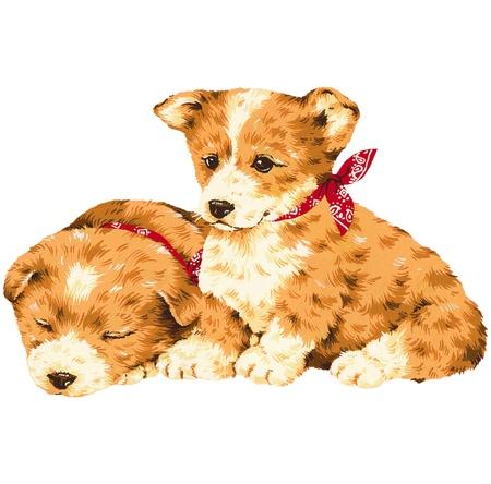 guiltless: A pretty dog