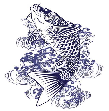 freshwater fish: Japanese carp Illustration