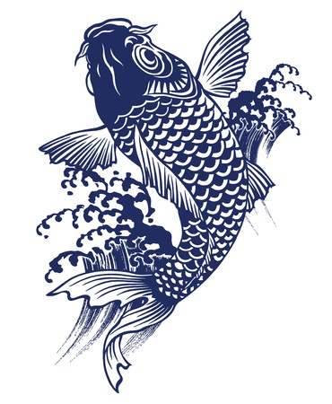 waterfall river:  carp Illustration