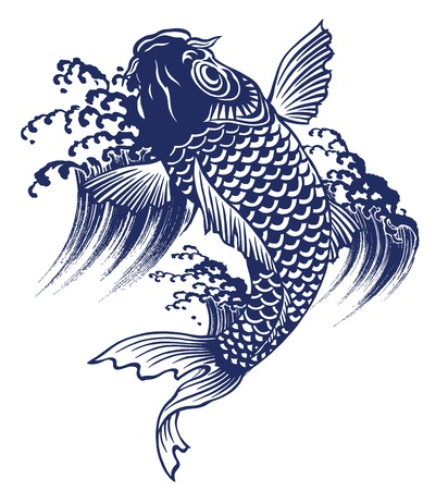 swimming carp:  carp Illustration