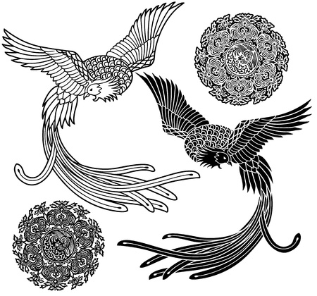 chinese phoenix: phoenix, Illustration