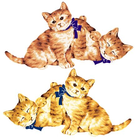 endearing: pretty kitten Stock Photo