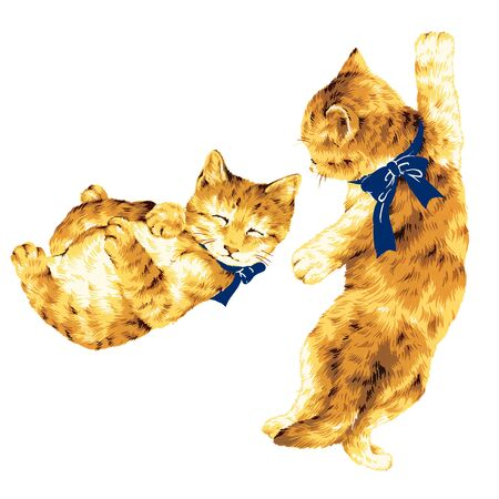 whim: pretty kitten Stock Photo