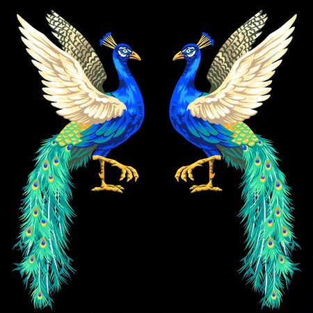 peacock, Stock Photo - 21747716