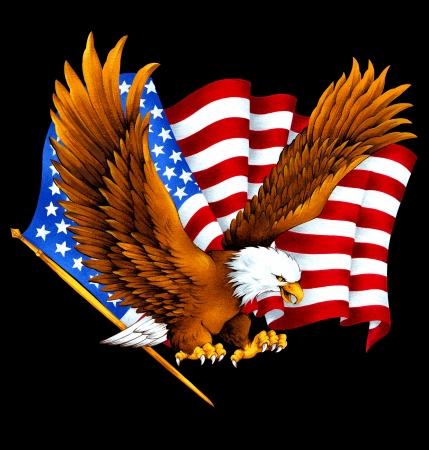 hawk: USA eagle,