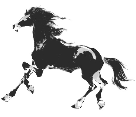sumi: Oriental horse Stock Photo
