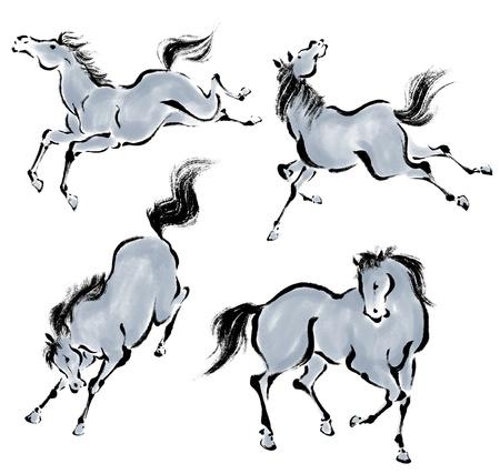 Oriental horse photo