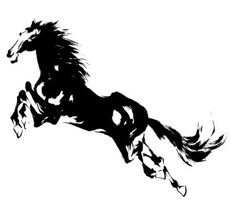 mammalian: Japanese horse