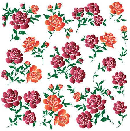llustration of rose